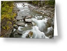 Macdonald Creek Greeting Card