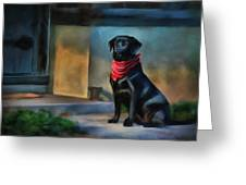 Mack Waits Greeting Card by Suni Roveto