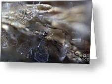 Snowflake Intimate Views Greeting Card