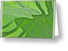 Macro Leaf Structure Greeting Card