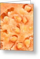 Macro Of Guava Fruit Greeting Card