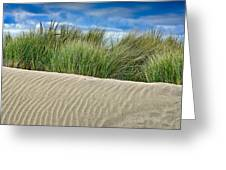 Mad River Dune Greeting Card