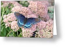 Madam Blue Greeting Card