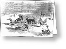 Madrid: Bullfight, 1846 Greeting Card