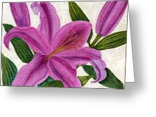 Magenta Lily Greeting Card by Vikki Wicks