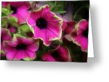 Magenta Petunia Greeting Card