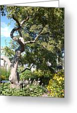Magestic Tree Greeting Card
