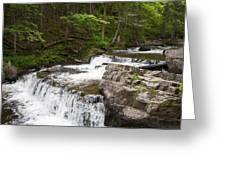Maggies Falls Lower Through A Green Forest Greeting Card
