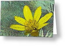 Magic Fern Flower 02 Greeting Card