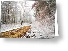 Magic Trail Greeting Card by Debra and Dave Vanderlaan
