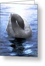 Magical Swan Greeting Card