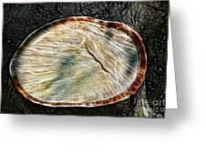 Magical Tree Stump Greeting Card by Mariola Bitner
