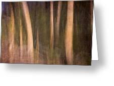 Magical Wood Greeting Card