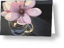 Magnolia Blossom In Glass Mug Greeting Card