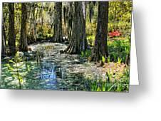 Magnolia Gardens Greeting Card