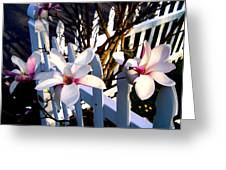 Magnolis's On A Picket Fence Greeting Card