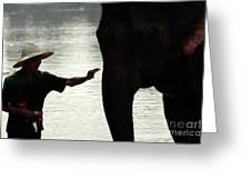 Mahut With Elephant Greeting Card