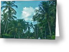 Mail Delivery In Paradise Greeting Card