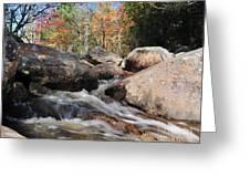 maine 29 Baxter State Park Trailside Stream Greeting Card