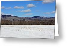 Maine Mountains Greeting Card