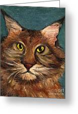 Mainecoon The Cat Greeting Card by Kostas Koutsoukanidis