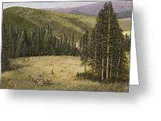 Majesty In The Rockies Greeting Card