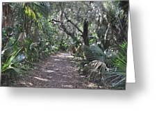 Mala Compra Trail Greeting Card
