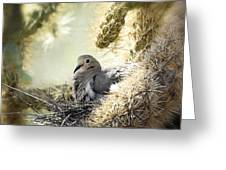 Mama Dove Greeting Card
