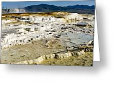 Mammoth Hot Springs Terraces Greeting Card