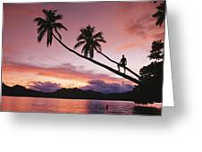 Man, Palm Trees, And Bather Silhouetted Greeting Card