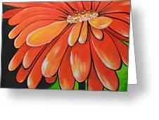 Mandarin Orange Greeting Card by Holly Donohoe