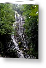 Mango Falls Greeting Card by Randy Edwards
