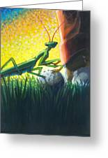 All Players Great And Small - Mantis Greeting Card
