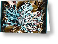 Maple Leaf And Laurel Greeting Card