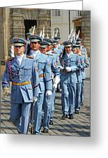Marching Guards Greeting Card