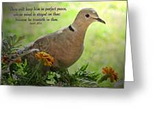 Marigold Dove With Verse Greeting Card