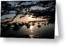 Marina At Sunrise Greeting Card