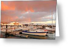 Marina In The Azores Greeting Card