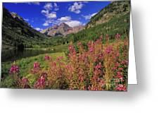 Maroon Bells - Fm000018 Greeting Card
