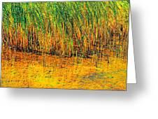 Marsh Colors  Greeting Card