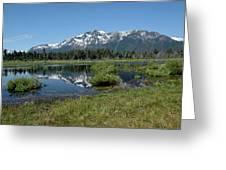 marsh Flowing to Lake Tahoe Greeting Card