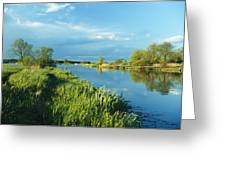 Marshlands In Spring, Unteres Odertal Greeting Card