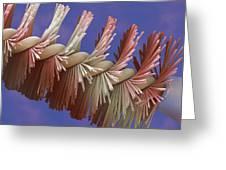 Mascara Brush, Sem Greeting Card