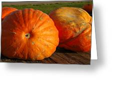 Mass Pumpkins Greeting Card