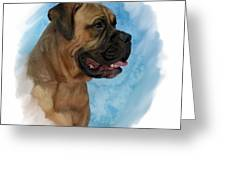 Mastiff 203 Greeting Card