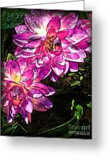 Maui Pink Garden Greeting Card