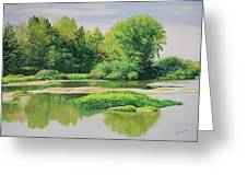 Maumee Reflection Greeting Card
