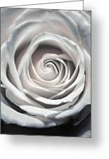 May Rose Greeting Card