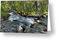 Mcgee Creek California Greeting Card