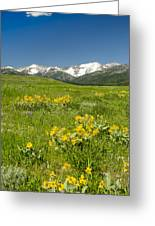 Meadow Landscape Greeting Card